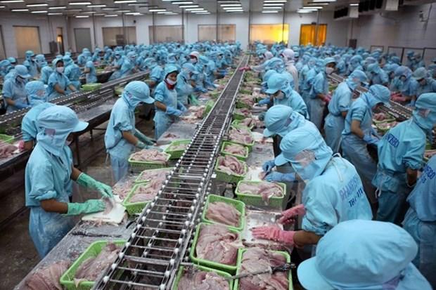 着力推进查鱼产业结构调整 hinh anh 1