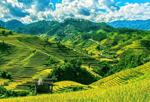 越南被列为全球最受欢迎的独自旅行胜地 hinh anh 1