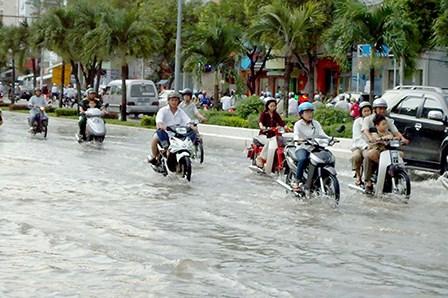 世行将援助芹苴市兴建城市环境卫生与内涝预防中心 hinh anh 1