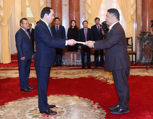 越南国家主席陈大光会见前来递交国书的各国新任驻越大使 hinh anh 5