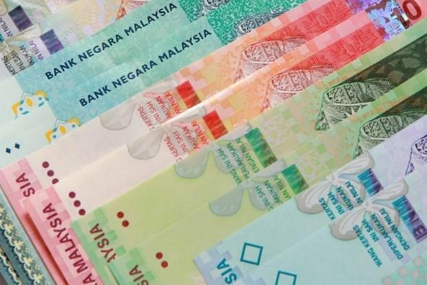 马来西亚成为东盟首个国家批准《关于特别针对发展中国家确定最低工资的公约》 hinh anh 1