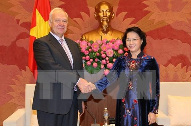 越南国会主席阮氏金银:越南将俄罗斯视为其对外政策中的首要优先 hinh anh 1