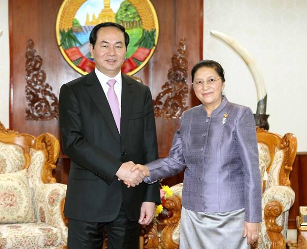 越南国家主席陈大光分别会见老挝总理与老挝国会主席 hinh anh 2