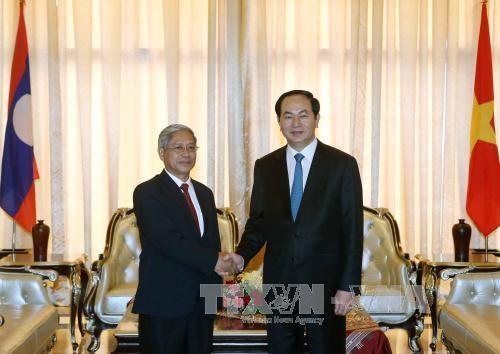 越南国家主席陈大光访问老挝期间开展系列活动 hinh anh 4