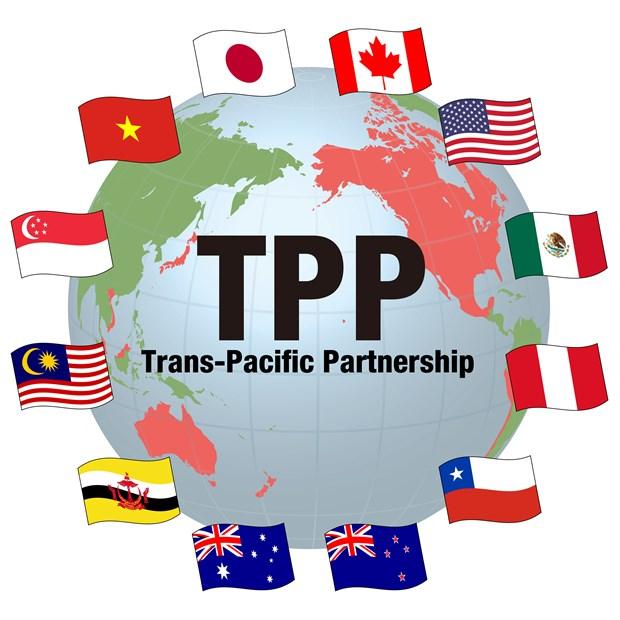 TPP及其对越南所产生的影响 hinh anh 1