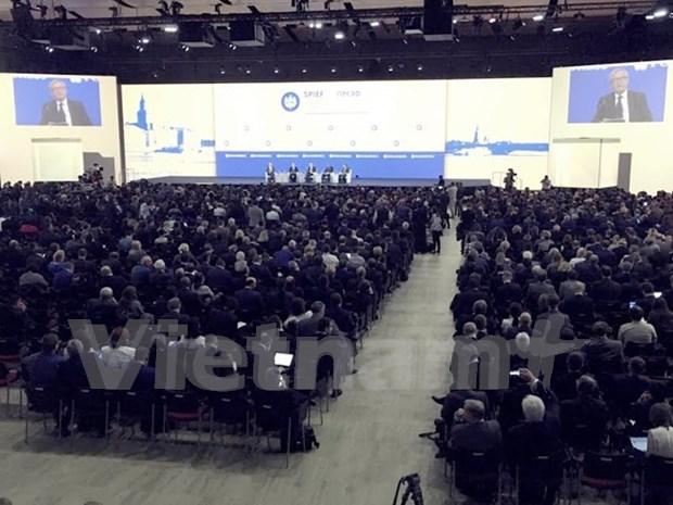 越南工商副部长黄国旺出席第20届圣彼得堡国际经济论坛 hinh anh 1