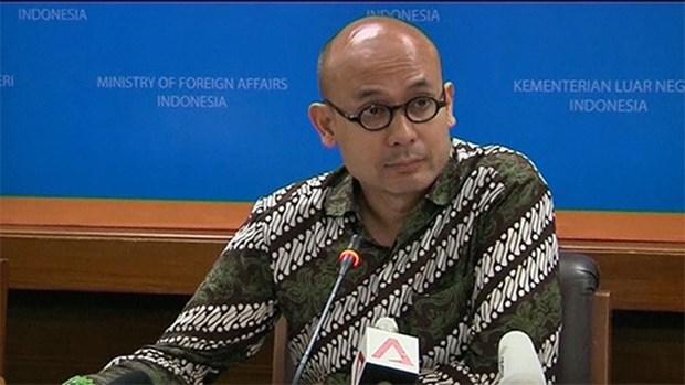 印尼承诺继续为维护东海和平稳定做出更大努力 hinh anh 1