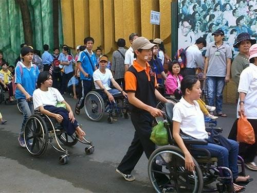 越南政府推行《残疾人权利公约》实施计划 hinh anh 1