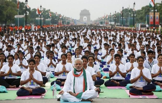 越南参加在印度举行的国际瑜伽日 hinh anh 1
