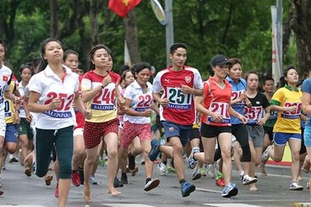 2016年《新河内报》第43次和平跑步公开赛启动 hinh anh 1
