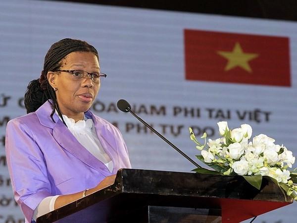 越南与南非促进贸易投资合作 hinh anh 1