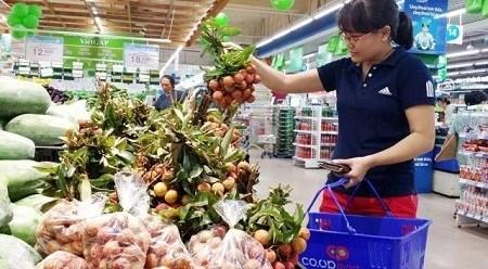 加大越南南方各省市市场的荔枝销售力度 hinh anh 1