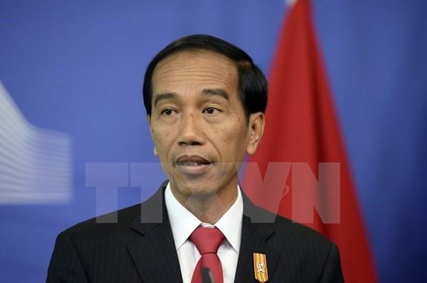 印尼优先推动纳土纳群岛经济发展 hinh anh 1