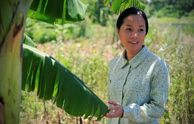 越南多部电影将亮相菲律宾国际电影节 hinh anh 1