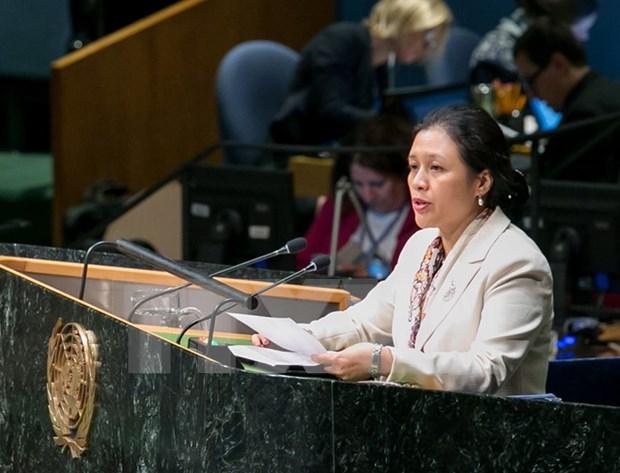 越南代表在《联合国海洋法公约》第26次缔约国会议上提及东海问题 hinh anh 1