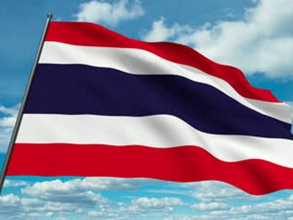 泰国对当选联合国安理会非常任理事国的可能性充满信心 hinh anh 1