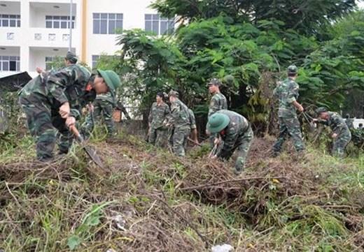胡志明市正式启动第十次绿色行军志愿活动 hinh anh 2