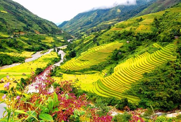越南沙巴、会安、下龙湾被列入亚洲最美丽目的地名单 hinh anh 1