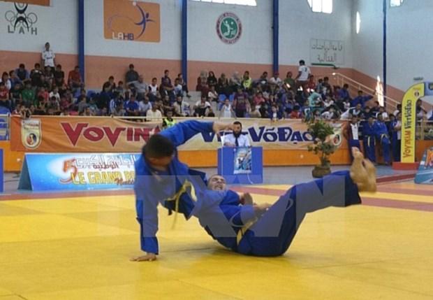 第四次欧洲越武道锦标赛落户瑞士 hinh anh 1