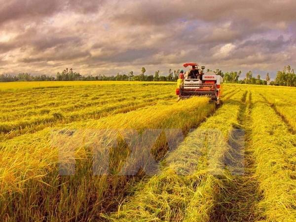 越南要争分夺秒全力以赴完成全年GDP增长6.7%的目标 hinh anh 1