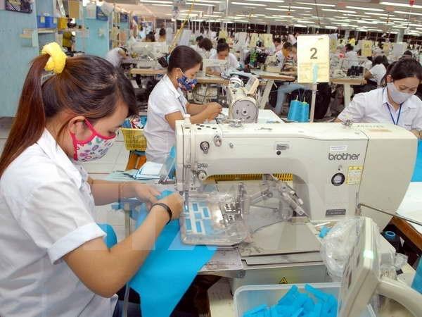 越南人口年龄结构处于黄金时期给经济社会发展事业带来利益 hinh anh 1