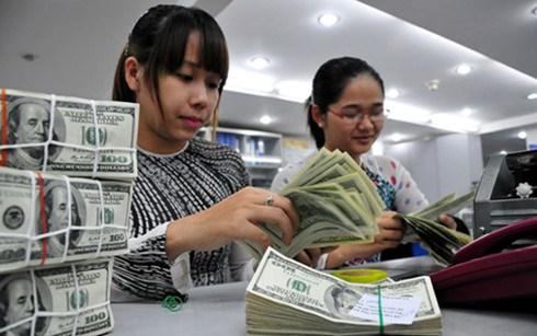 越南国家银行越盾兑换美元中心汇率较前一日下跌8越盾 hinh anh 1