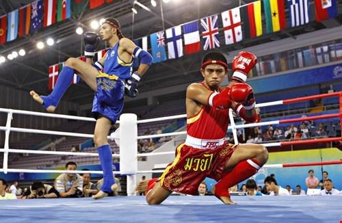 2016年越南全国泰拳锦标赛在清化省拉开战幕 hinh anh 1