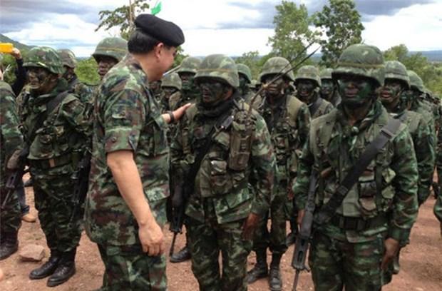 泰国同马来西亚进行联合军事演习 hinh anh 1