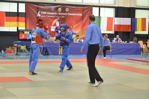第四次欧洲越武道锦标赛:德国夺得冠军 hinh anh 2