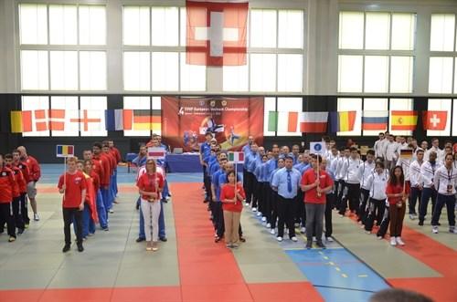 第四次欧洲越武道锦标赛:德国夺得冠军 hinh anh 1