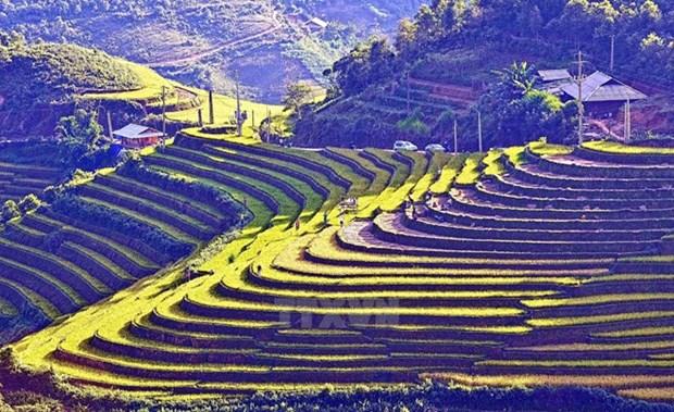 越南西北地区各省在河内推介当地文化之美 hinh anh 1