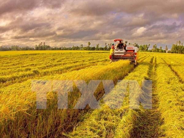 越南坚持出口额增长10%的目标 hinh anh 1