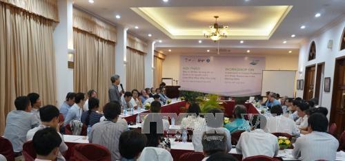 越南加大投资力度努力保护和管理九龙江三角洲海岸带和水资源 hinh anh 1