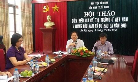 越南主动做好下半年市场价格变动应对方案准备 hinh anh 1