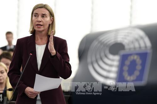 欧盟呼吁和平解决东海争议 hinh anh 1