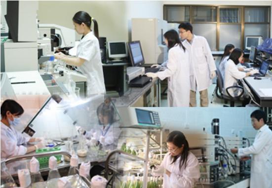 河内市力争2020年发展成为越南技术开发和转让中心 hinh anh 1