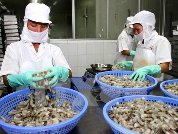 2016年前5个月越南对美国虾类出口增长17% hinh anh 1