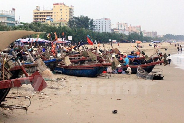 清化省岑山市镇力争到2017年成为现代海滨城市 hinh anh 1