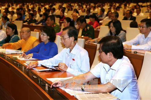 越南第十四届国会第一次会议:国会代表肩负人民的重任 hinh anh 1