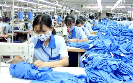 今年前6个月越南纺织品服装出口总额达126多亿美元 hinh anh 1