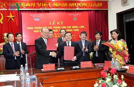 越南与日本加强农业与农村发展领域的合作 hinh anh 1