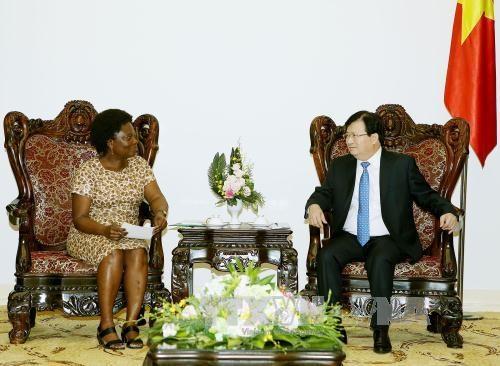 政府副总理郑廷勇会见世行东亚与太平洋地区副行长维多利亚·克瓦 hinh anh 1