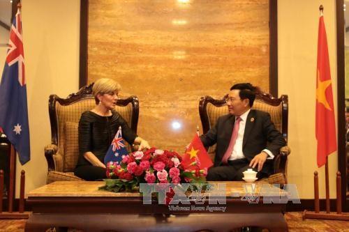 越南政府副总理兼外交部长范平明分别会见各国外长 hinh anh 3
