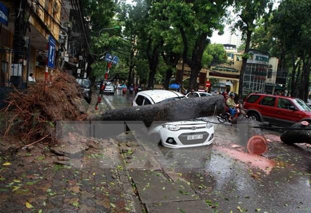 越南政府总理对台风过后救灾及恢复重建工作做出重要指示 hinh anh 1