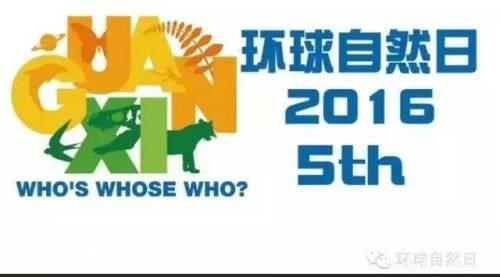 越南在环球自然日国际比赛中喜获金牌 hinh anh 1