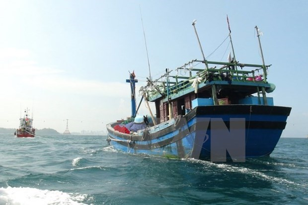越南驻中国大使馆对在北部湾湾口外海域遇险的越南公民开展领事保护工作 hinh anh 1