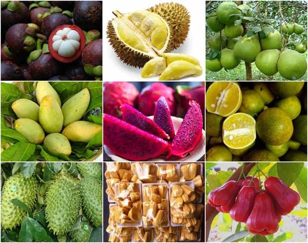 南部特产与安全食品农产辨别宣传周将于8月中旬在河内市举行 hinh anh 2