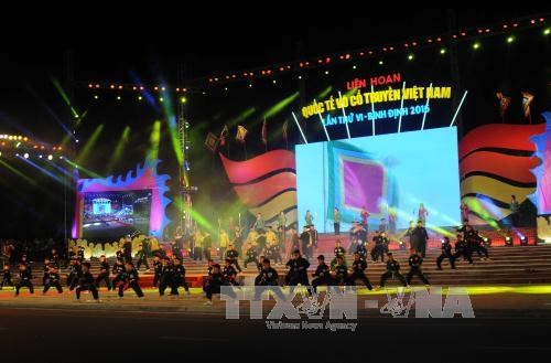 第6届越南传统武术国际节在平定省开幕 hinh anh 1
