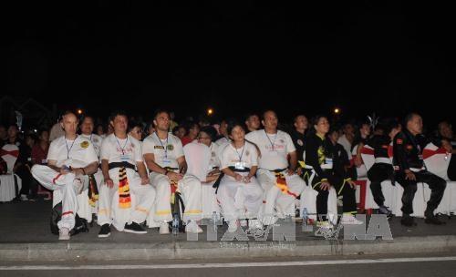 第6届越南传统武术国际节在平定省开幕 hinh anh 2