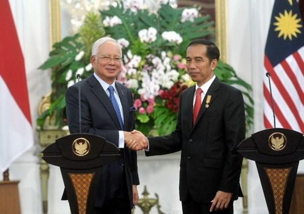 马来西亚与印度尼西亚加强解决领土争端问题 hinh anh 1